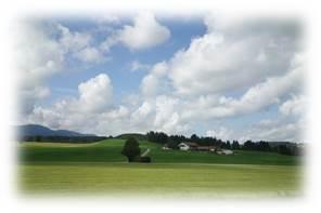 ドイツ牧場
