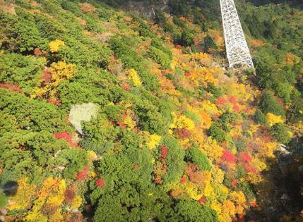 御在所岳ロープウェイ紅葉