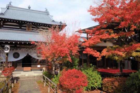 【京都】閑臥庵の紅葉やランチの普茶料理をレビューしてみた