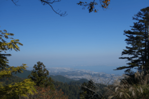 坂本ケーブル景色