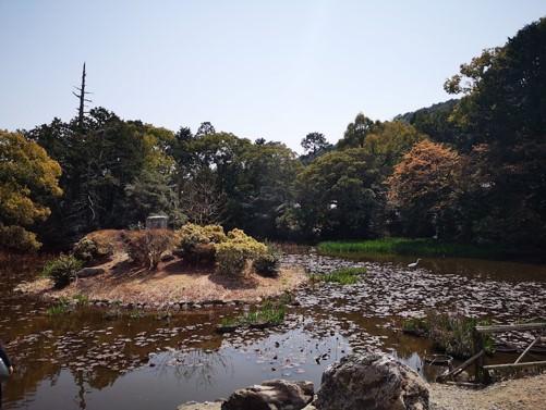 勧修寺氷室の池